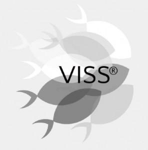 VISS Verbinding van Inspiratie met Structuren en Systemen
